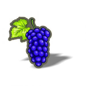 Fruits Magnet 8